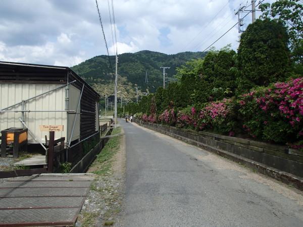 ベース前の道