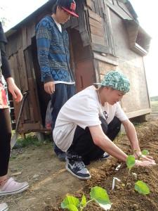 苗を植えるショータ