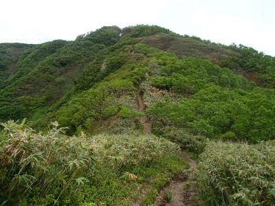 山頂へ向かう小径
