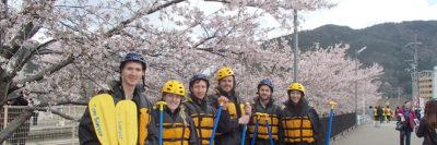 桜の木の下